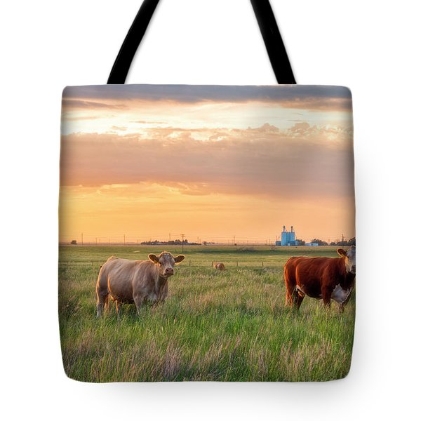 Sunset Cattle Tote Bag