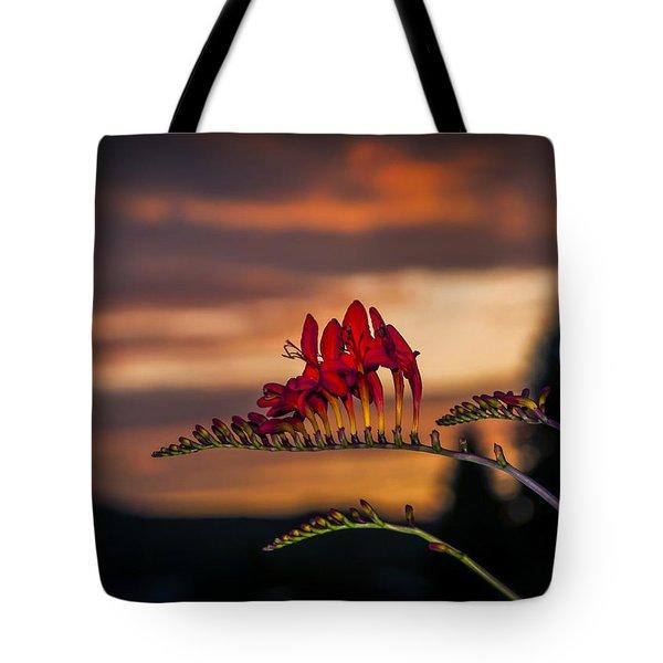 Sunset Crocosmia Tote Bag