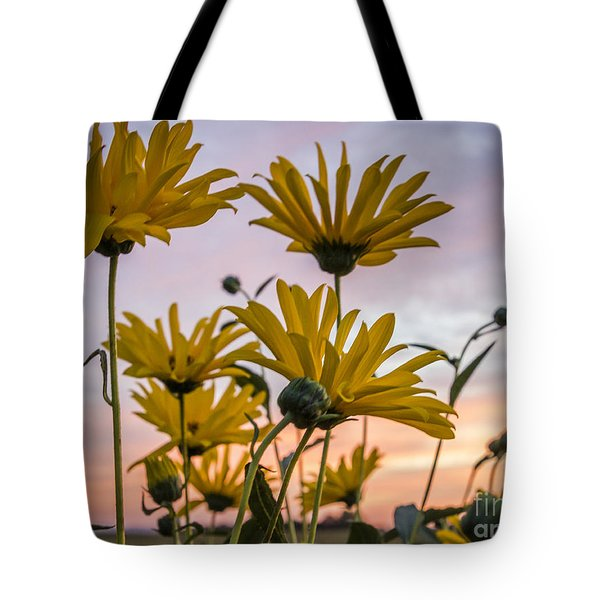 Sunset Delight Tote Bag