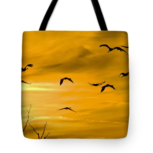 Tote Bag featuring the photograph Sunset Fliers by Wanda Krack