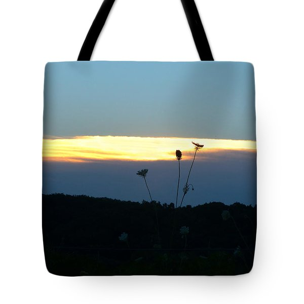 Sunset Gold Stripe Queen Anne Tote Bag