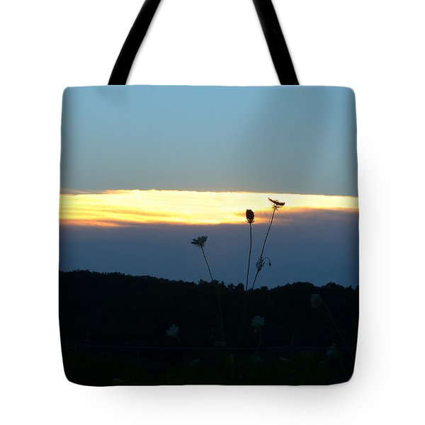Sunset Gold Stripe Queen Anne Tote Bag