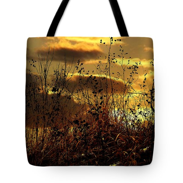 Sunset Grasses Tote Bag