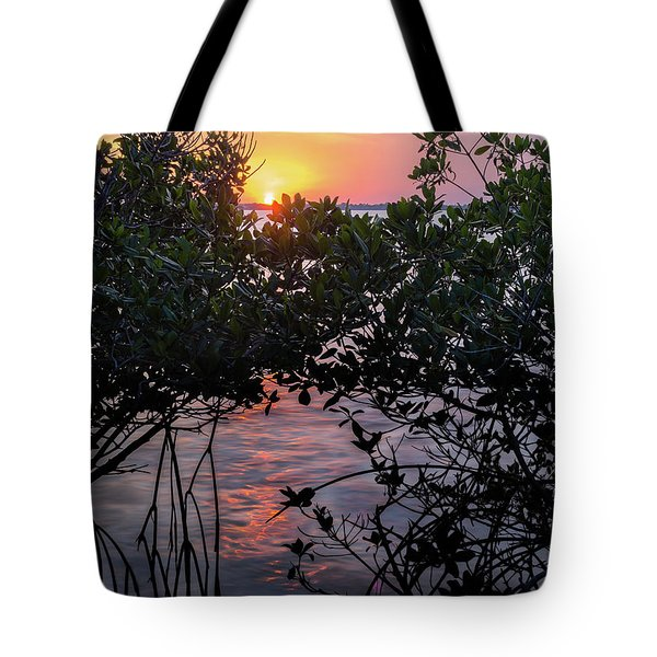 Tote Bag featuring the photograph Sunset, Hutchinson Island, Florida  -29188-29191 by John Bald