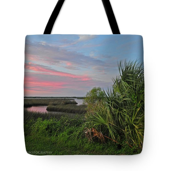 D32a-89 Sunset In Crystal River, Florida Photo Tote Bag