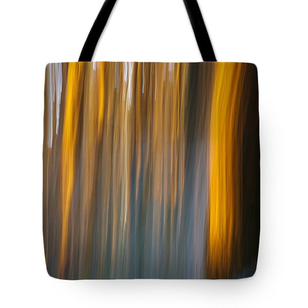Tote Bag featuring the photograph Sunset In Forest by Davorin Mance