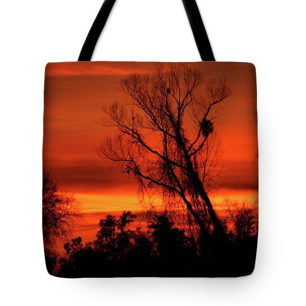 Sunset In Sacramento Tote Bag