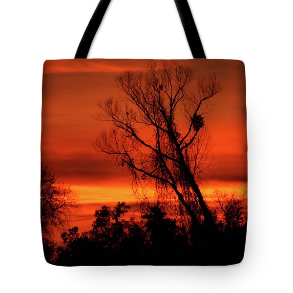 Sunset In Sacramento Tote Bag