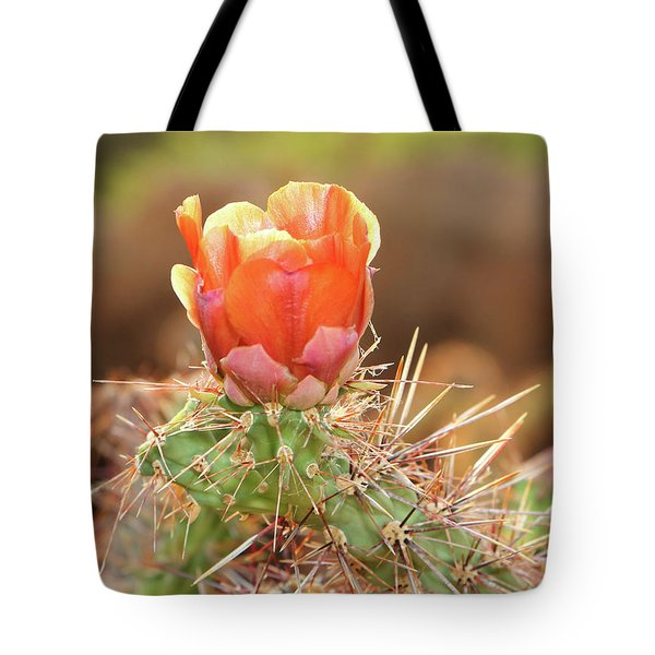 Sunset In The Deserts Tote Bag
