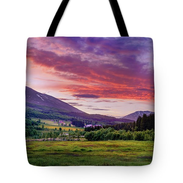 Tote Bag featuring the photograph Sunset In The Meadow by Dmytro Korol