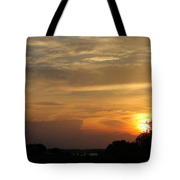 Sunset In The Park Tote Bag by Robert Banach