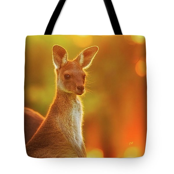 Tote Bag featuring the photograph Sunset Joey, Yanchep National Park by Dave Catley