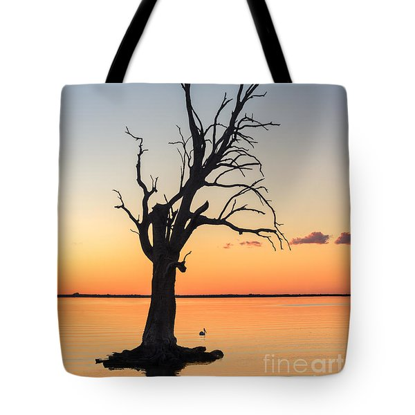 Tote Bag featuring the photograph Sunset Lake by Ray Warren