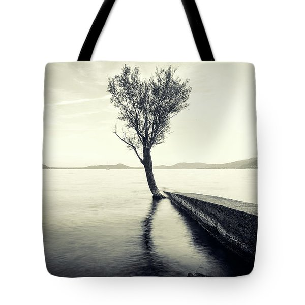 Sunset Landscape With A Tree In The Background Immersed In The L Tote Bag