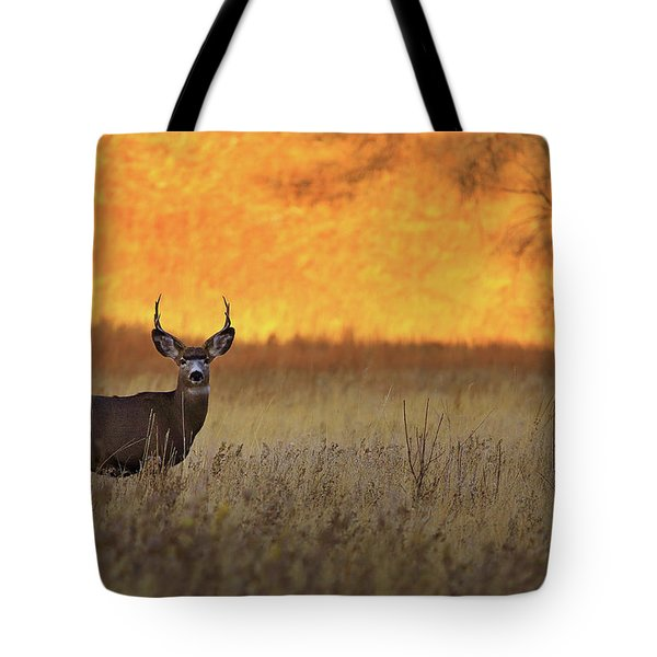 Tote Bag featuring the photograph Sunset Lover by Kadek Susanto