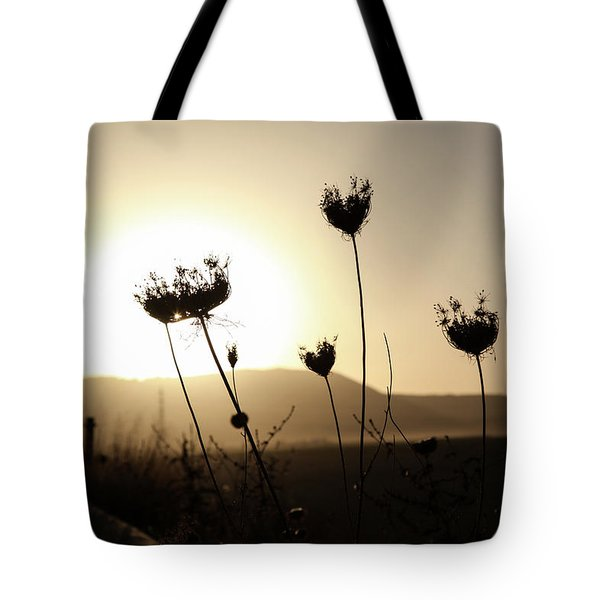 Tote Bag featuring the photograph Sunset On Galilee Road by Yoel Koskas