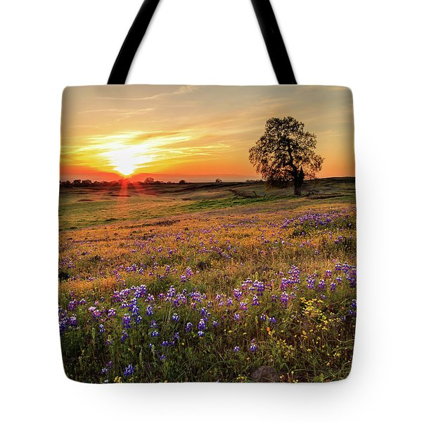 Sunset On North Table Mountain Tote Bag
