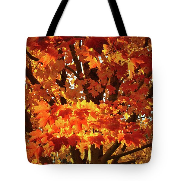 Tote Bag featuring the photograph Sunset On Sugar Maple by Ray Mathis