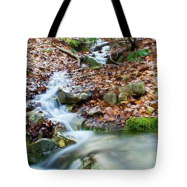 Tote Bag featuring the photograph Sunset Over An Oak Mountain Stream by Parker Cunningham