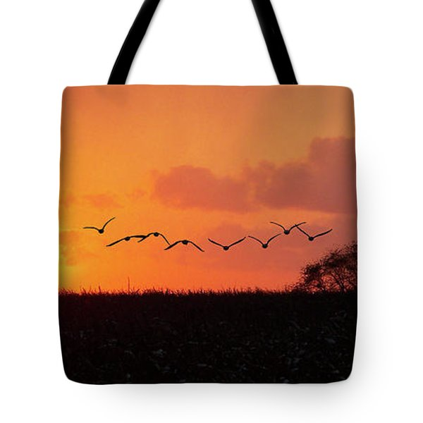 Sunset Over Easy Tote Bag by Sue Stefanowicz