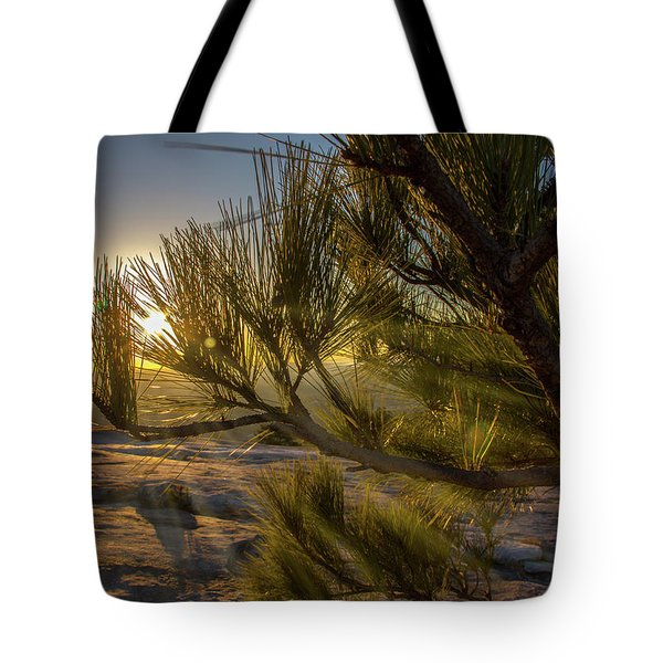 Sunset Pines Tote Bag