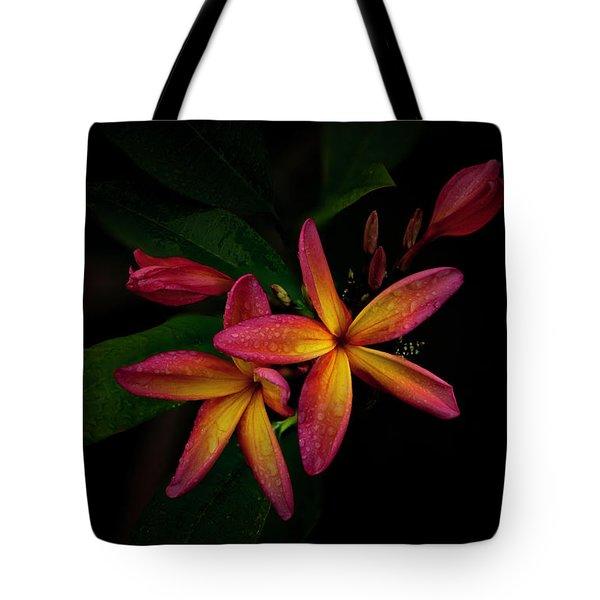 Sunset Plumerias In Bloom #2 Tote Bag