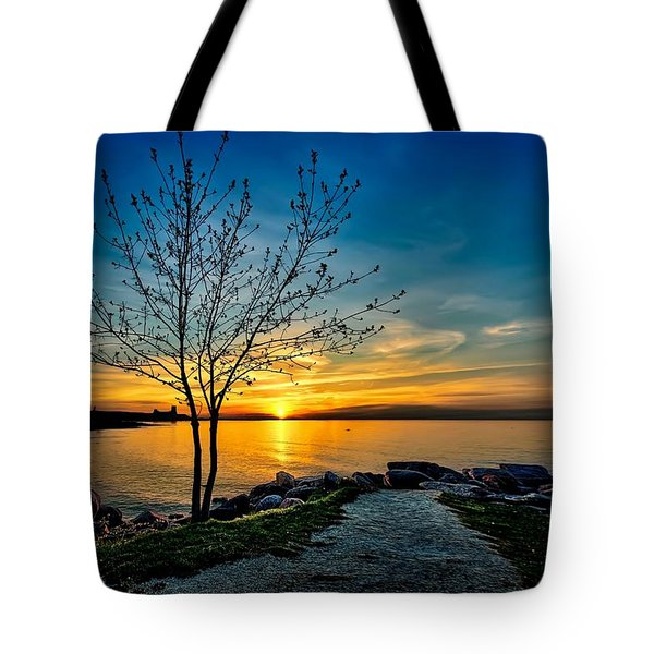 Sunset Point  Tote Bag