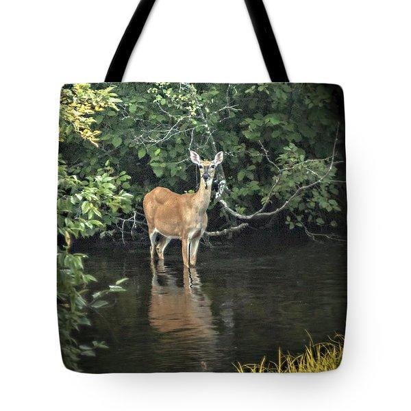 Sunset River Doe Tote Bag