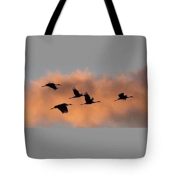 Sunset Sandhill's Tote Bag