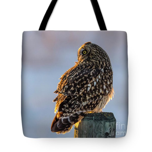 Sunset Short-eared Owl Tote Bag