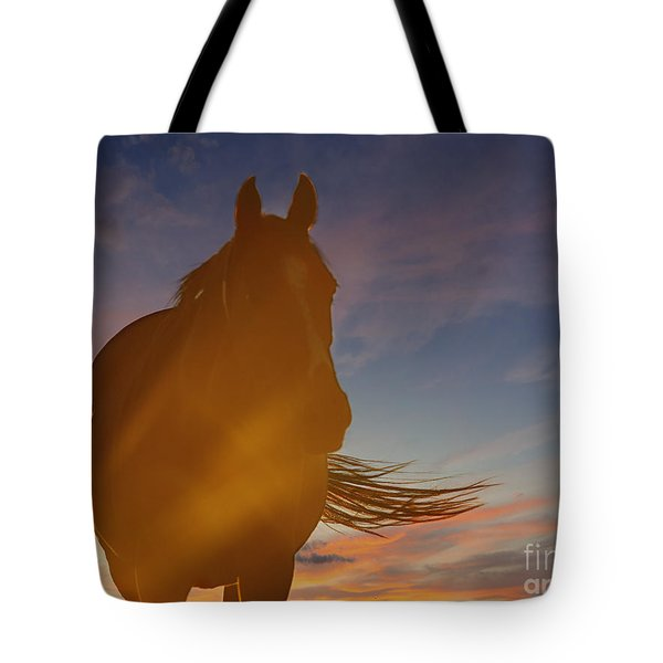 Tote Bag featuring the photograph Sunset Silhouette by Carol Lynn Coronios