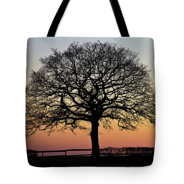 Tote Bag featuring the photograph Sunset Silhouette by Clare Bambers