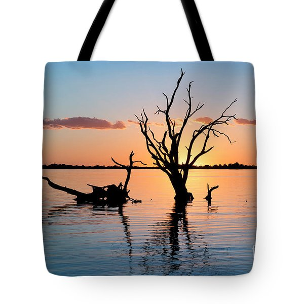 Tote Bag featuring the photograph Sunset Silhouette by Ray Warren