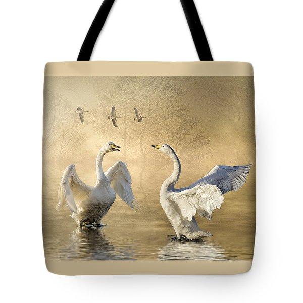 Sunset Squabble Tote Bag