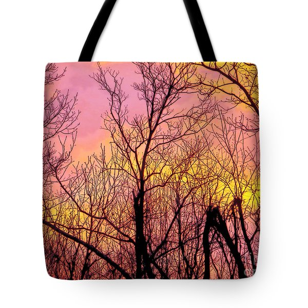 Sunset Through The Trees Tote Bag by Craig Walters