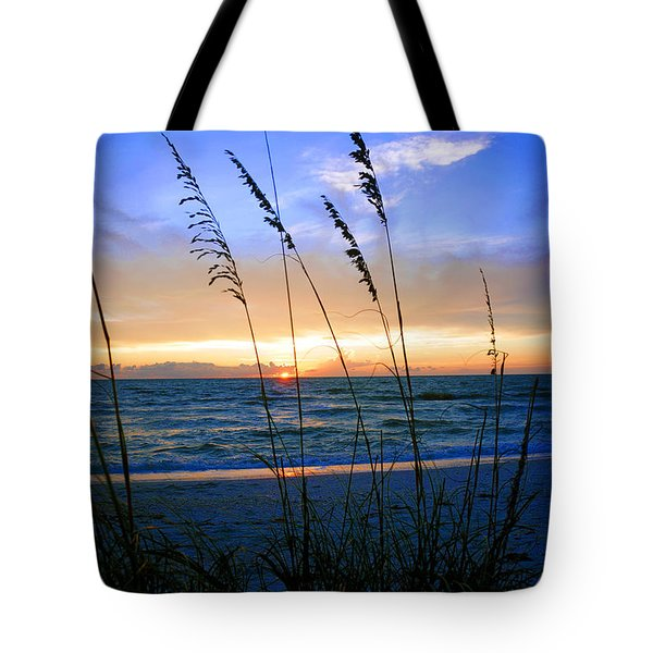 Sunset Thru The Sea Oats At Delnor Wiggins Tote Bag