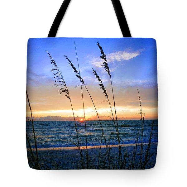 Sunset Thru The Sea Oats At Delnor Wiggins Tote Bag