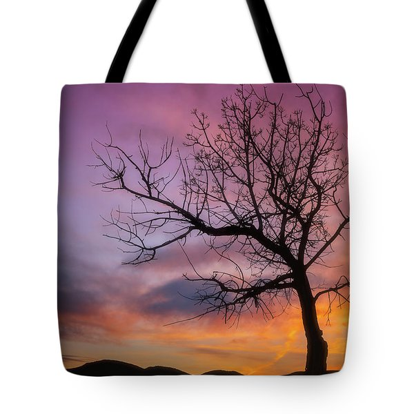 Sunset Tree Tote Bag by Darren White