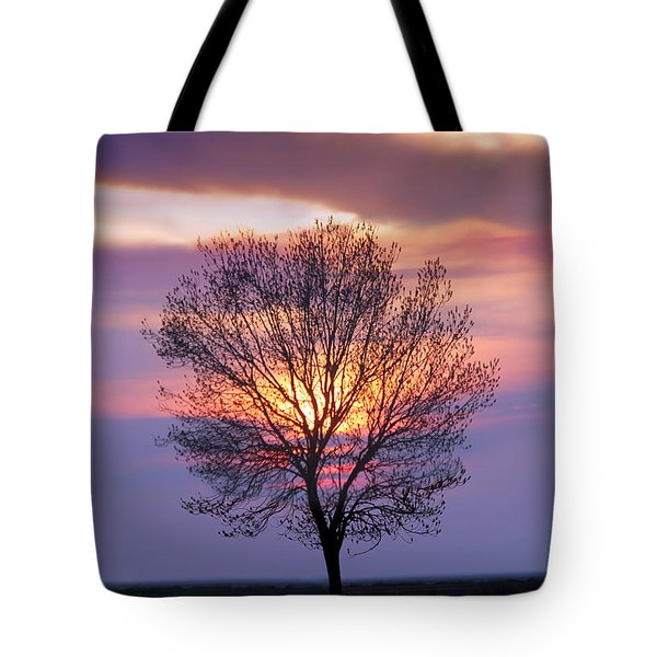 Sunset Tree In The San Joaquin Valley, California Tote Bag