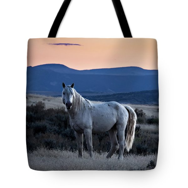 Sunset With Wild Stallion Tripod In Sand Wash Basin Tote Bag