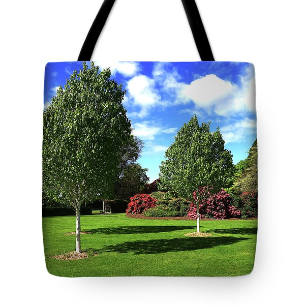Sunshine And Shadows Tote Bag