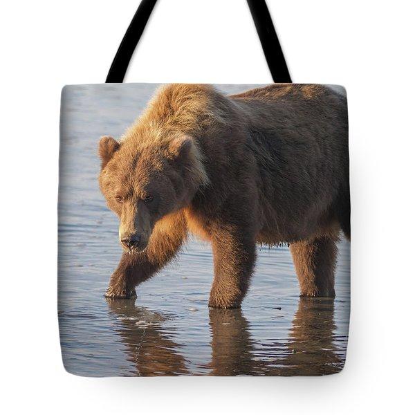Sunshine Bear Tote Bag