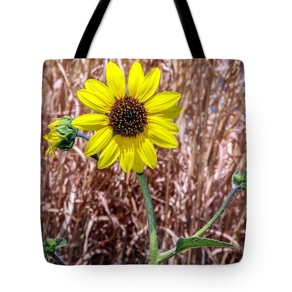 Tote Bag featuring the photograph Sunshine by Elaine Malott