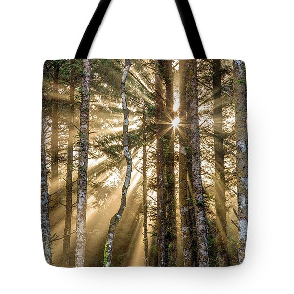 Sunshine Forest Tote Bag by Pierre Leclerc Photography