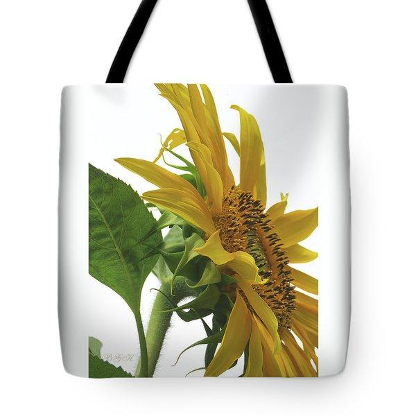 Sunshine In The Garden 25 Tote Bag by Brooks Garten Hauschild