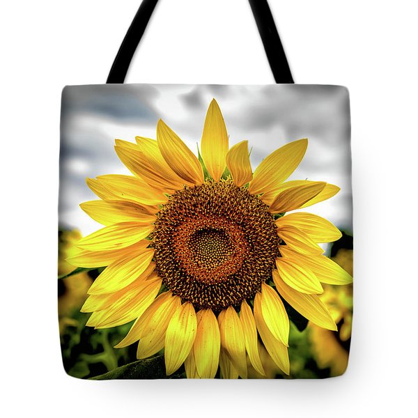 Tote Bag featuring the photograph Sunshine by Louis Dallara
