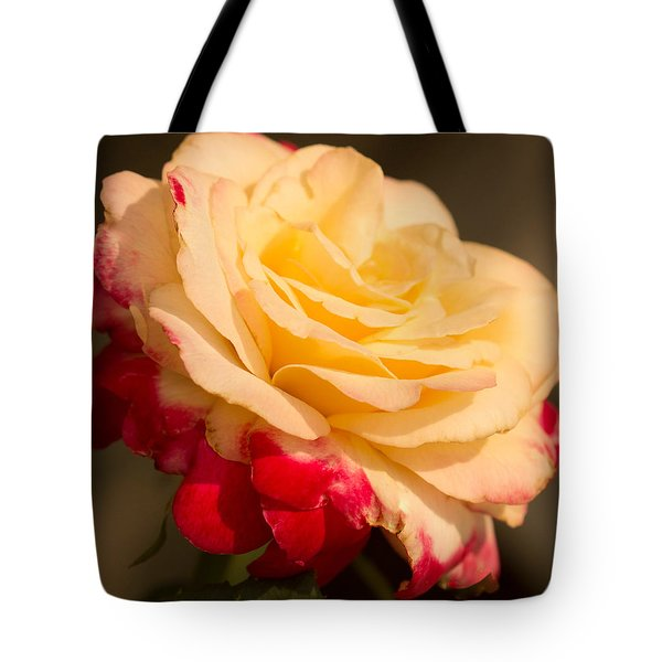 Tote Bag featuring the photograph Sunshine On Roses by Cathy Donohoue