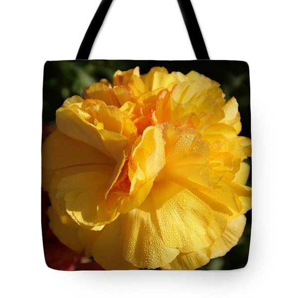 Sunshine On Sunshine Tote Bag by Andrea Jean
