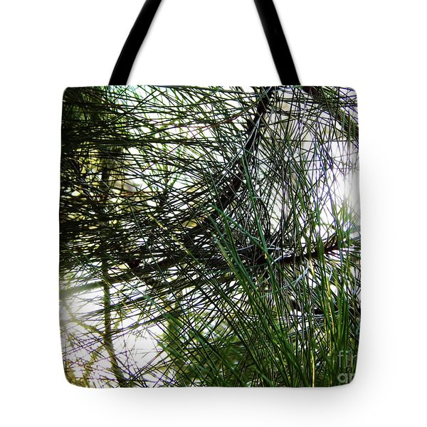 Sunshine Through Pine Needles Tote Bag