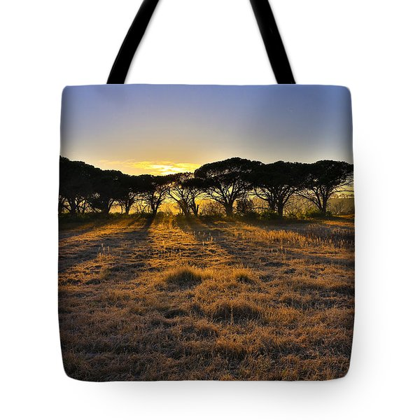 Sunsrays Tote Bag
